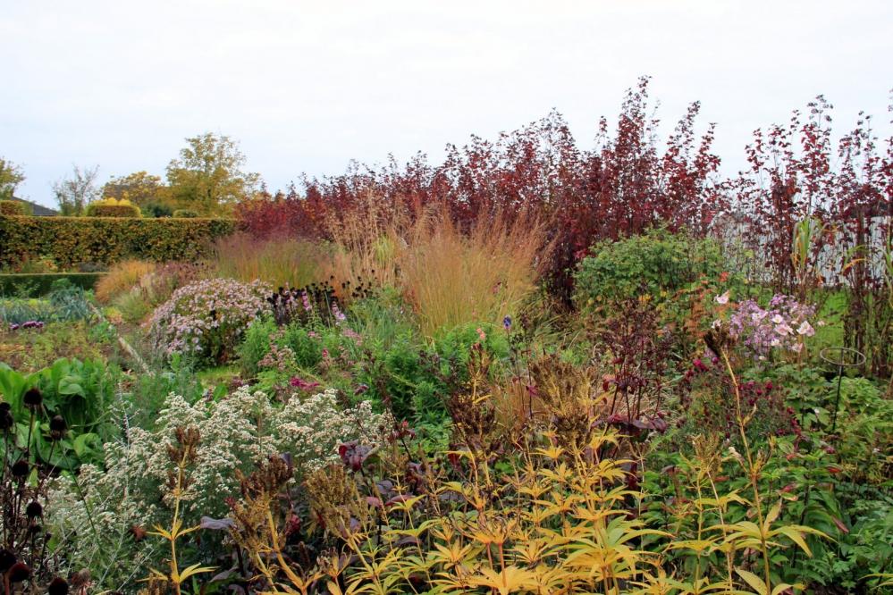 1-Prairie- en grassenborder eind oktober.JPG